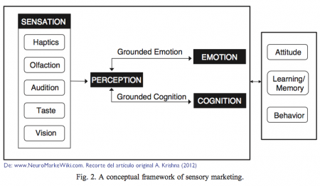Conceptual-framework-of-sensory-marketing-krishna-2012.png